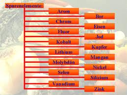 SASAS Gesundheits Tips und Info des Tages: Spurenelemente 2