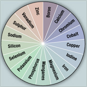 minerals_image
